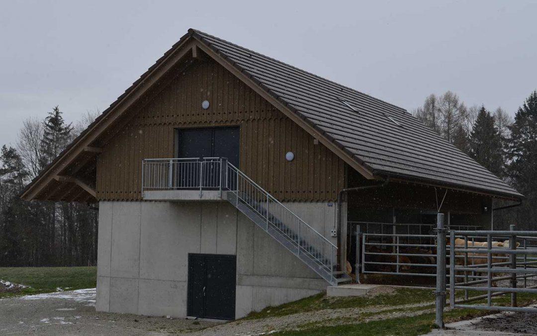 Stall mit Jauchegrube, 2017